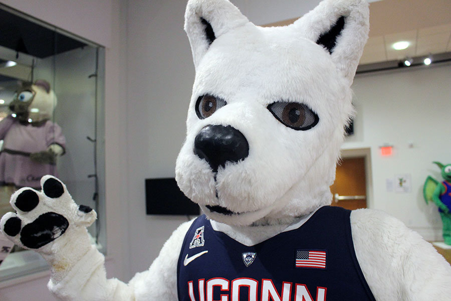 "In this Tuesday, Oct. 24, 2017 photo, the costume of Jonathan, the Husky, mascot of the University of Connecticut, is displayed at the The Ballard Institute and Museum of Puppetry, at the University of Connecticut in Storrs, Conn. It is part of the exhibit ""Mascots! Mask Performance in the 21st Century,"" of sports and commercial mascots opened this week and runs through Feb. 11, 2018. (AP Photo/Pat Eaton-Robb)"